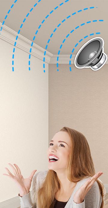 Acoustics & Noise Control